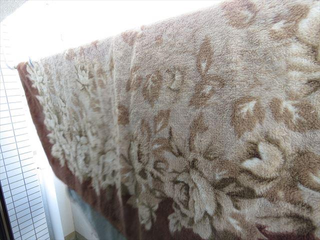 オキシクリーンに浸けてキレイになった絨毯
